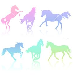 Horse silhouette collection vector on VectorStock®