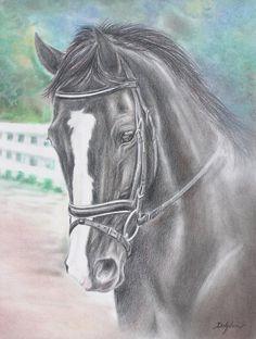 Custom pastel portrait of Faux Pas or Emma