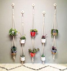 Quem não quer mais uma sugestão para fazer um jardim vertical fácil e que ocupe pouco espaço? Você quer? Entra.