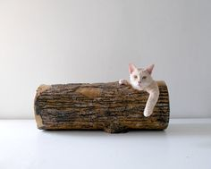Large Hideout Log  Rustic woodlike tunnel for by SAYSCULPTURES