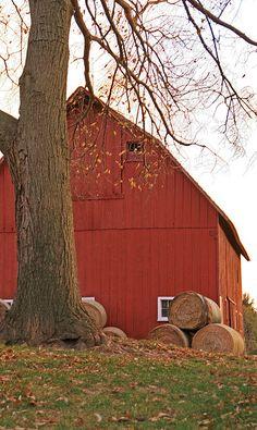 Barn in fall by susyr22, via Flickr