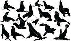 sea lion tattoo - Google Search