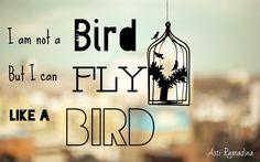 I am not a bird