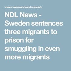 NDL News  - Sweden sentences three migrants to prison for smuggling in even more migrants