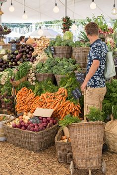 visit oranjezicht city farm market in cape town South Africa