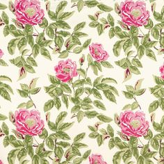 Manor Rose | 175770 in Pink Lady | Schumacher Fabric |  Introduced in 1944, Manor Rose was one of Dorothy Draper's first patterns for Schumacher. With its dramatic scale, the bright chintz bears all the trademarks of its famed designer.