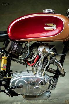 Radical Ducati S.: by Radical Ducati Motos Retro, Motos Vintage, Vintage Bikes, Triumph Motorcycles, Cool Motorcycles, Vintage Motorcycles, British Motorcycles, Ducati Custom, Custom Bikes