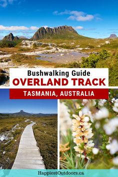Tasmania's Overland Track is the states most famous bushwalking track. This gorgeous hike in Cradle Mountain National Park should be on every hiker's bucket list. Hike the 65km route over six days, camping or staying in huts along the way. Don't miss side trips to peaks, lakes and waterfalls. Use this guide to plan your Overland Track hike. Overland Track in Tasmania. How to hike the Overland Track. New Zealand Adventure, Mountain Hiking, Backpacking Tips, Best Hikes, Tasmania, Australia Travel, Waterfalls, All Over The World, Outdoor Activities