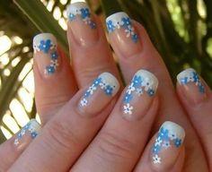 Blue & white flowers