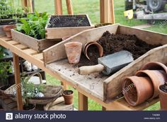 Stock Photo - The Potting Bench in a greenhouse at RHS Malvern Spring Show Greenhouse Benches, Greenhouse Shelves, Outdoor Potting Bench, Potting Bench Plans, Backyard Greenhouse, Small Greenhouse, Greenhouse Plans, Garden Shed Interiors, Greenhouse Interiors