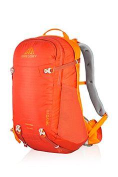 Gregory Salvo 28 Backpack Burnished Orange One Size    For more  information, visit image f2847d0997