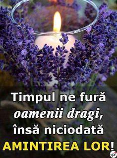 Utila, Positivity, Memories, Words, Plants, Capricorn, Om, Facebook, Happy Woman Day
