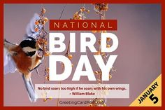Fun Facts About Birds, National Celebration Days, The Caged Bird Sings, January 5th, King Quotes, David Attenborough, Migratory Birds, What Day Is It