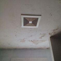 bathroom ceiling mold removal. Bathroom Ceiling Mold Removal #syracuseny #moldtesting #moldremoval #moldremediation #moldinspection