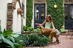 Located In The Dog Loving City Of Charleston S Kings Courtyard Inn Is Just Moments Away From Friendly Parks And Restaurants