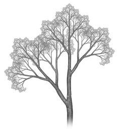 Robert Fathauer Fractal Tree No. 4