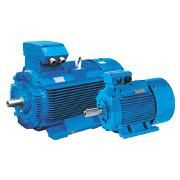 The Three Phase Induction Motor has two separated windings or Dahlander connection, which is suitable for various loads. WDS Series Three Phase Induction Motor is suitable for fan drive with constant power, constant torque, depending on user's option of load and control circuit.