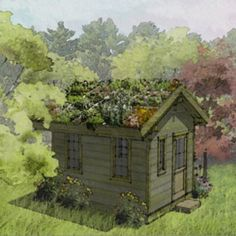 """Complete plans for a 10x12 gabled roof shed with 6"""" deep green roof garden. Includes: - Detailed Materials List - Foundation Floor Plan & Details - Roof Plan & Details - Elevations - Green Roof Care S"""