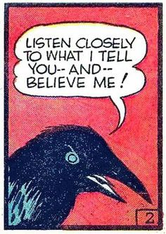 Whatever and whenever a crow has something to  tell me, I will definitely listen.