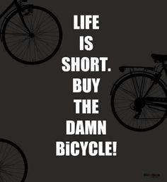 Pedegopittsburgh.com ......electric assist bicycles...pedal when you want...friends don't let friends buy walmart bikes