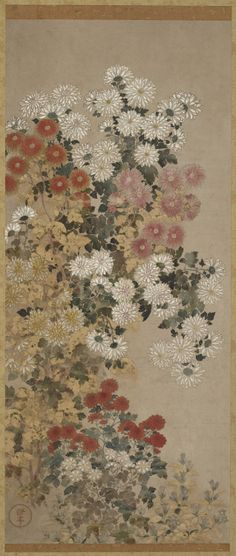 'Chrysanthemums' (Edo period, 1600-1630). Colour on paper by Master of I-nen.Image and text courtesy The Freer Gallery of Art.