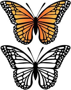 Butterfly black and white, white butterfly tattoo, butterfly stencil, butterfly artwork, butterfly Monarch Butterfly Tattoo, Butterfly Stencil, Butterfly Artwork, Butterfly Clip Art, Butterfly Drawing, Butterfly Pictures, Butterfly Template, Butterfly Crafts, Butterfly Wings