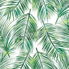 Vector illustration of  green palm tree leaf seamless  pattern via MuralsYourWay.com