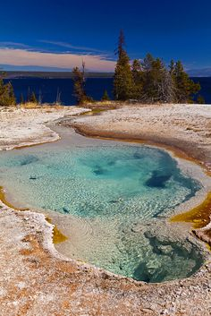 Pool of Geysers, Yellowstone National Park, Wyoming