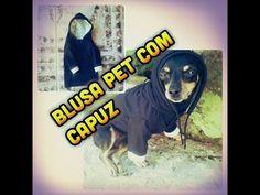 DIY - roupa de frio para cachorro _ BLUSA COM CAPUZ - YouTube