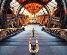 Museo Nazionale di Storia Naturale, Londra, Regno Unito