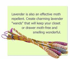 Way too much work for me to make...maybe I can buy some at the Jonesboro Lavender Festival in June.