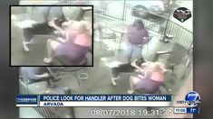 Arvada police looking for dog handler after animal bites woman in the face Dog Attack, Dog Owners, Pitbulls, Crime, Police, Woman, Face, Dogs, Animals