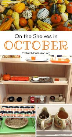 Preschool and Montessori activities for October and a Fall theme Informations About On the Shelves i Montessori Baby, Montessori Trays, Montessori Kindergarten, Fall Preschool Activities, Montessori Homeschool, Montessori Practical Life, Montessori Classroom, Montessori Activities, Montessori Materials