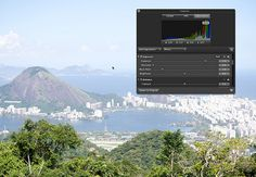 Histograms: The Key to Perfect Exposure