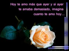 imagenes-romanticas-de-amor-con-frases-romanticas-en-movimiento Heart Wallpaper, Lily, Google, Mayo 2016, Happy Birthday, Best Images Of Love, Love Photos, Pretty Images, Thank You God