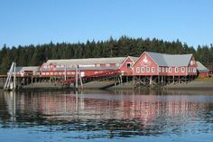 Icy Strait Point - whale watching was great here and the best option for an activity other than the zip line or shopping