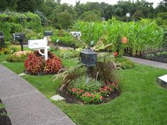 flower bed landscaping ideas | The photo on the left shows a narrow border at the Missouri Botanic ...