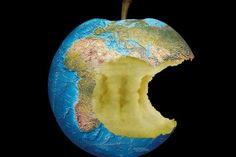 Ogni anno nel mondo si buttano via 1,3 miliardi di tonnellate di avanzi, un terzo di tutto il cibo prodotto.  Cada año en el mundo se tiran 1,3 mil milliones de toneladas de comida, una tercera parte de toda la comida producida.