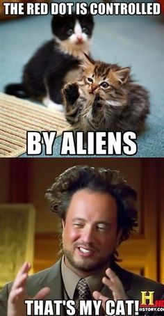 """Ancient aliens 344666177707734435 - Ancient Aliens guy memes – Giorgio A. Tsoukalos, """"Ancient Aliens Guy"""" Source by bettychinwu Alien Pictures, Funny Pictures, Animal Pictures, Ancient Aliens Meme, Anime Alien, Alien Quotes, Aliens Guy, Funny Cats, Haha"""