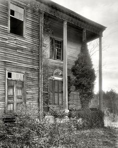 1936. Halifax County, North Carolina.