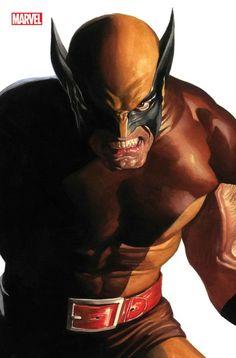 Alex Ross, Spiderman, Batman, Jean Grey, Harley Quinn, X Men Personajes, Dc Comics, Star Wars, One Wave