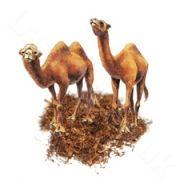 E Liquid UK. Hangsen e liquid Desert Ship Tobacco E Cigarette Brands, Vape, Deserts, Ship, Smoke, Electronic Cigarette, Vaping, Postres, Ships