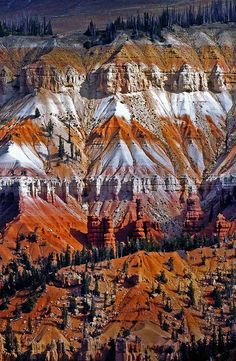 Cedar Breaks National Monument, Utah, USA. By David Pinzer.