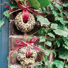 Tiny treat wreaths, for backyard songbirds...