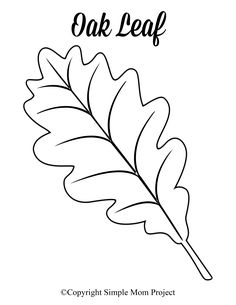 Free Printable Large Leaf Templates, Stencils and Patterns Looking for an autumn leaf craft idea? Use these free large printable leaf cutout templates so spark your creativity! These fall leaf stencils make a perfect easy coloring page for pres Leaves Template Free Printable, Maple Leaf Template, Pumpkin Template, Printable Crafts, Owl Templates, Applique Templates, Applique Patterns, Printable Stencils, Stencil Templates