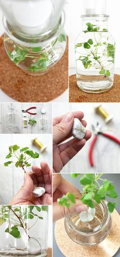 DIY: Dani von Gingered Things zeigt dir wie du mit Klee im Glas Glück schenken … DIY: Dani from Gingered Things shows you how to give luck with clover in the glass and preserve it as a gift for friends. Diy Plante, Diy Silvester, Diy Gifts, Handmade Gifts, Fabric Flowers, Diy Art, Gifts For Friends, Fabric Crafts, Crafts For Kids