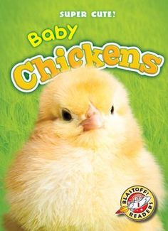 Baby Chickens ~ by Megan Borgert-Spaniol