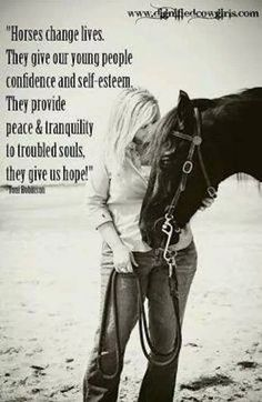 1000 inspirational horse quotes on pinterest horse