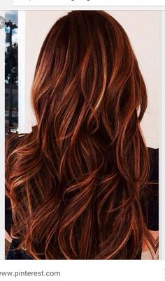 Auburn Hair Color with Caramel Highlights. Are you looking for auburn hair color hairstyles? See our collection full of auburn hair color hairstyles and get inspired! Hot Hair Colors, Brown Hair Colors, Auburn Hair Colors, Winter Hair Colors, Hair Color For Dark Skin, Red Hair Color, 2015 Hairstyles, Pretty Hairstyles, Blonde Hairstyles
