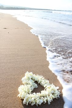 white orchid lei on the sand